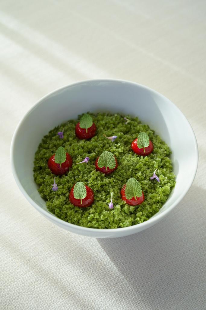 Фото блюд для ресторана молекулярной кухни